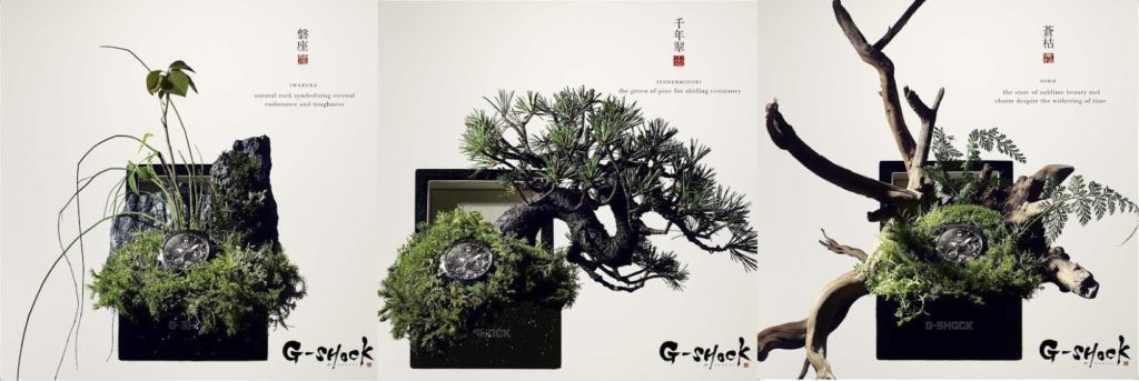 LA CAMPAGNA G-SHOCK x BONSAI