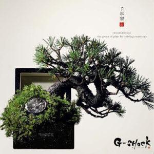 """""""蒼 枯 SOKO"""" Si riferisce alla sublime bellezza e il fascino raggiunto nonostante gli effetti del tempo."""
