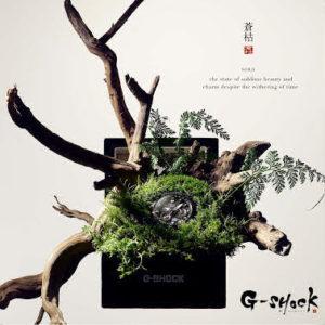 """千年 翠 SENNENMIDORI"" Si riferisce ai sempreverdi di un pino, che simboleggia la permanenza della costanza."