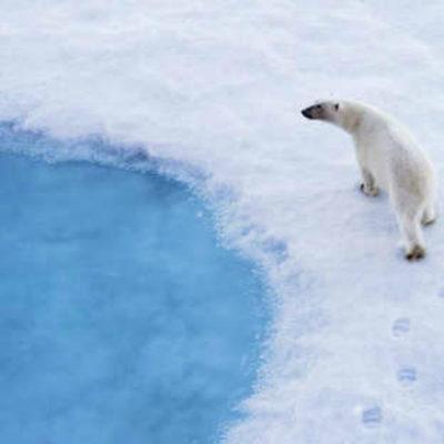 Breitling e Ocean  Conservancy: passione condivisa per oceani salubri e puliti